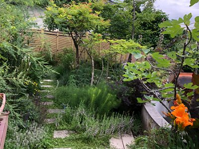 富雄のお庭